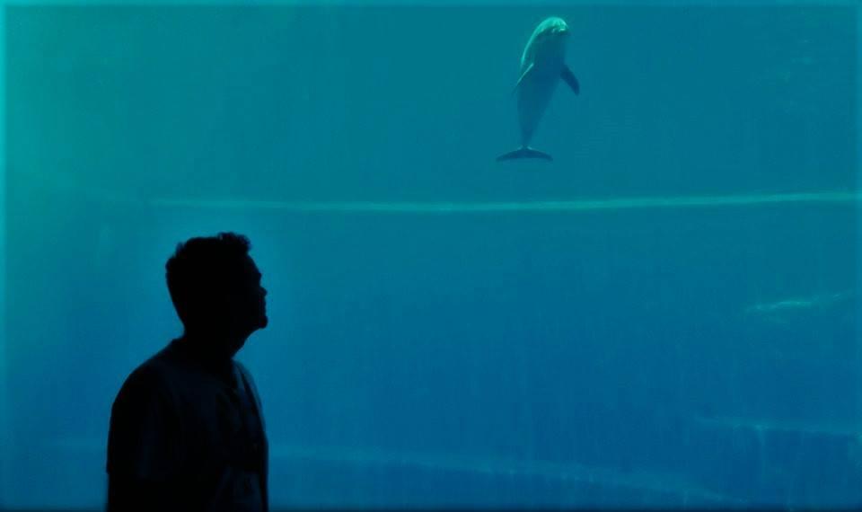 Κολύμπι στις ροδακινιές